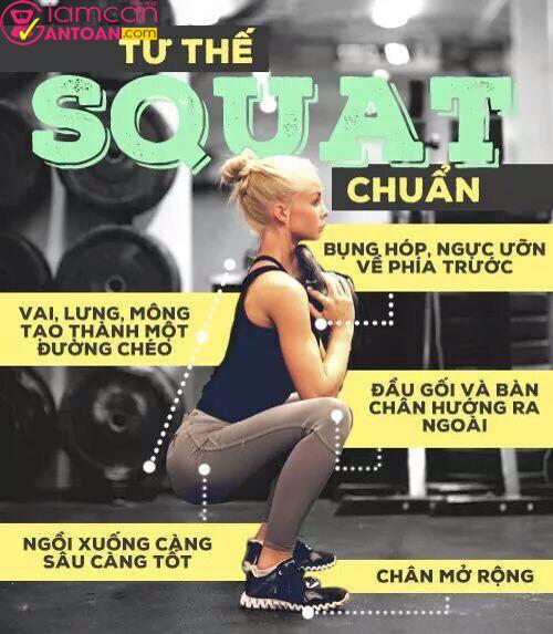 Squat giúp giảm mỡ bụng rất hữu hiệu