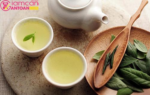 Uống trà xanh giúp tăng cường đốt chất béo giúp giảm cân hiệu quả