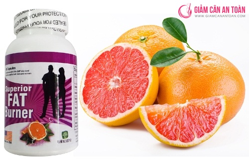 Superior Fat Burner giam can an toan